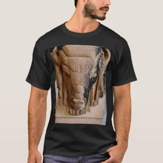 Fireplace Bison, Nebraska State Capitol T-Shirt