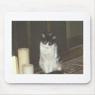 Fireplace Kitty Mouse Mat