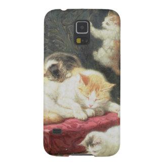Fireside Bliss (oil on panel) Galaxy S5 Case