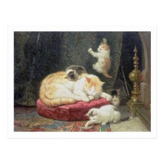 Fireside Bliss (oil on panel) Postcard