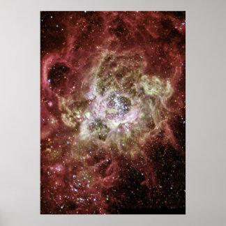 Firestorm of Star Birth in Galaxy M33 Poster