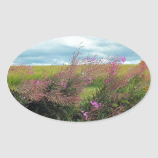 Fireweed 2 oval sticker