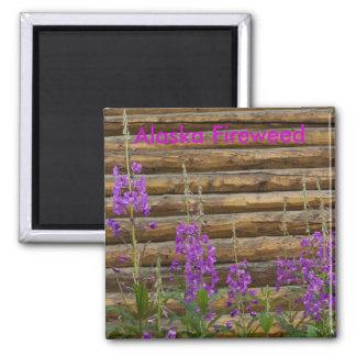 Fireweed de Alaska Imán Para Frigorifico