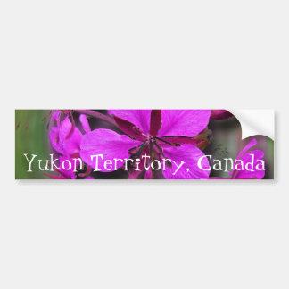 Fireweed in a Hurricane; Yukon Territory Souvenir Car Bumper Sticker