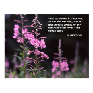 Fireweed Plants - ee cummings quote Postcard