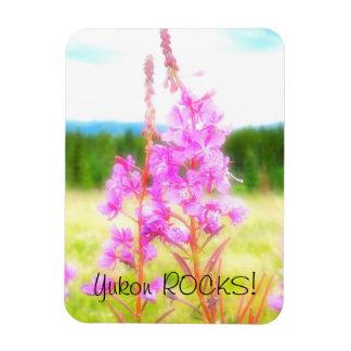 Fireweed soñador; Recuerdo del territorio del Yukó Imanes Flexibles