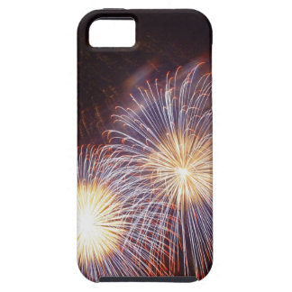 Firework iPhone 5 Covers