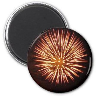 Fireworks1c magnet