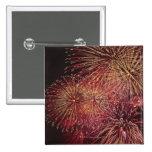 Fireworks 3 pin