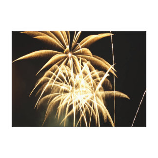 Fireworks Canvas Print 171