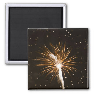 Fireworks display on Savannah River 2 Inch Square Magnet