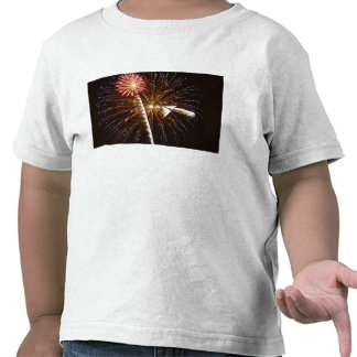 Fireworks display on Savannah River 2 T Shirts