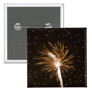 Fireworks display on Savannah River Button
