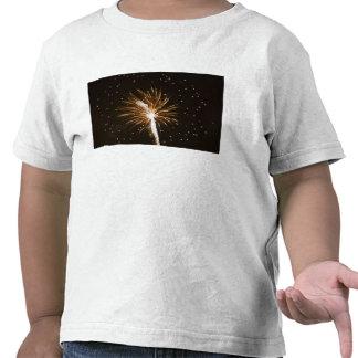 Fireworks display on Savannah River Tshirts
