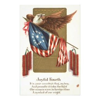 Fireworks Firecracker US Flag Bald Eagle Photo Print