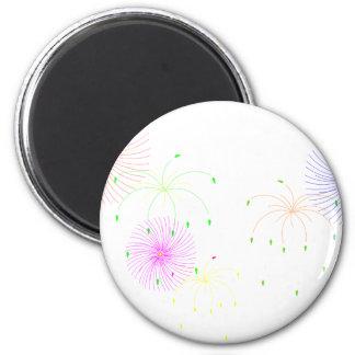 Fireworks Magnets