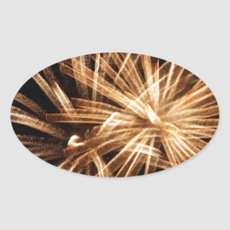 fireworks oval sticker