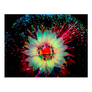 Fireworks sunflower postcard