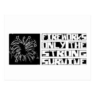 Fireworks Survive Postcard