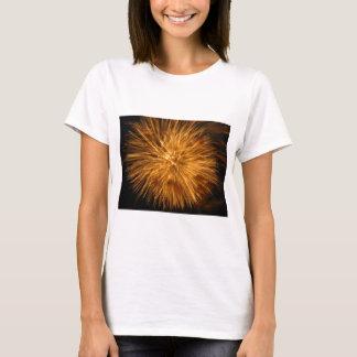 fireworks T-Shirt