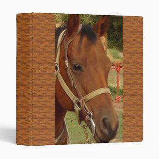 """Firma 1"""" de Avery de la cabeza de caballo carpeta"""