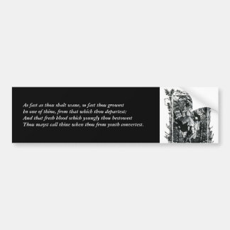 First 4 Lines of Sonnet # 11 by Shakespeare Car Bumper Sticker