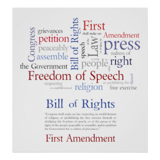 First Amendment Rights - Freedom of Speech Large Poster