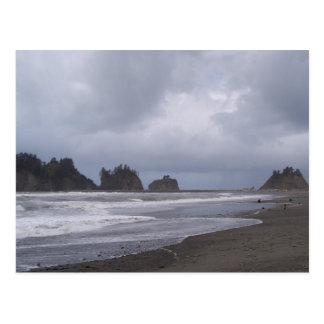 First Beach At LaPush Postcard