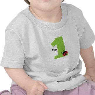 First Birthday, I'm One, Cute ladybug T-shirt