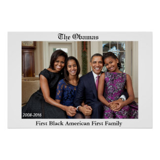 FIRST BLACK AMERICAN FIRST FAMILY poster