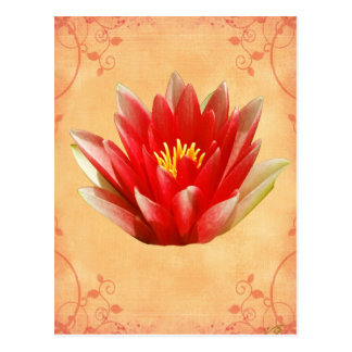 First Chakra Gift Postcard