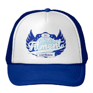 First Class Fitment 2012 Canibeat Hat