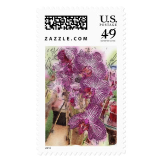 First Class Postage - Orchids