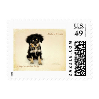 First class stamp featuring a shelter puppy