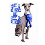 First Dog Italian Greyhound Post Card