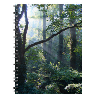 First Light Notebook