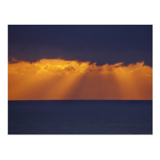 First Light over Tasman Sea, Australia Postcard