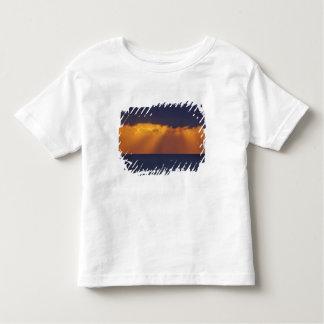 First Light over Tasman Sea, Australia Toddler T-shirt