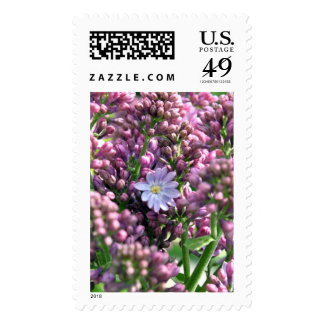 First Lilac Flower with twelve petals Stamp