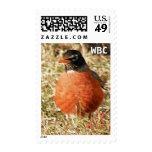 First Proud Spring Robin Monogram Postal Stamp