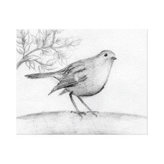 First Robin Canvas Print