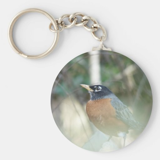 First Robin of Spring Key Chains