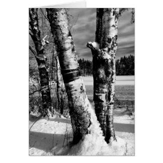 First snow 2007 card