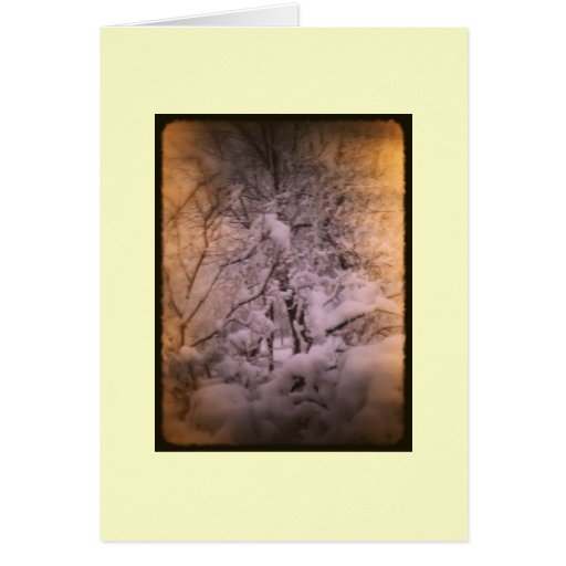 First Snow for Mary Card