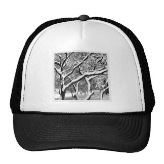 First Snow Manzanita Hats