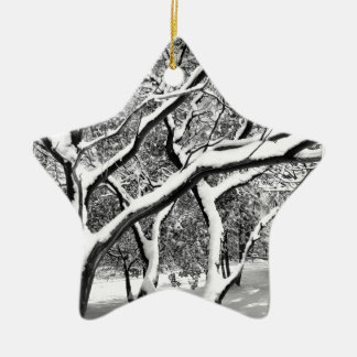 First Snow Manzanita Christmas Tree Ornament