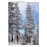 First Snowfall Stationery Note Card