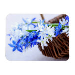 First spring flowers rectangular magnets