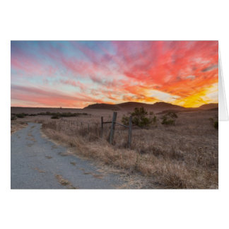 First Sunset of the Day Greeting Cards