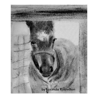 First Time Out, by Lucinda Knowlton Poster